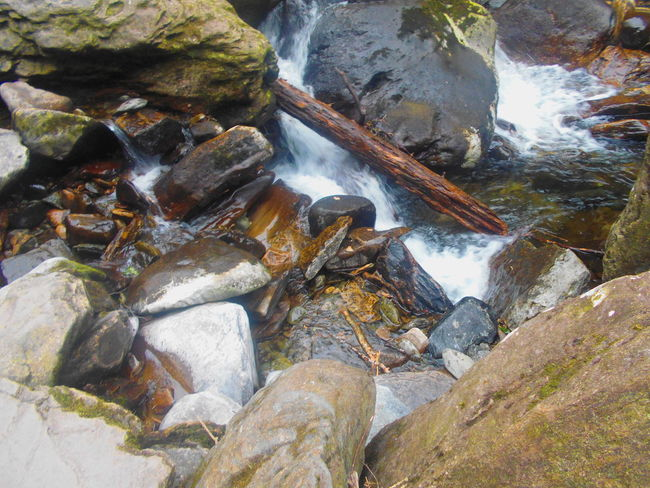 Beauty In Nature Close-up Day Flowing Flowing Water Idyllic Moss Motion Nature No People Non-urban Scene Outdoors Rock Rock - Object Rock Formation Scenics Stream Tranquil Scene Tranquility Water