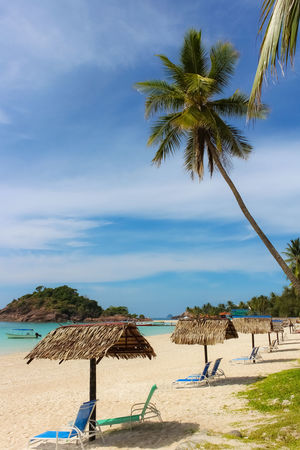 Redang Island Beach Beauty In Nature Blue Cloud - Sky Day Growth Horizon Over Water Landscape Malaysia Nature No People Outdoors Palm Tree Sand Scenics Sea Sky Tranquil Scene Tranquility Travel Destinations Tree Tree Trunk Vacations Water