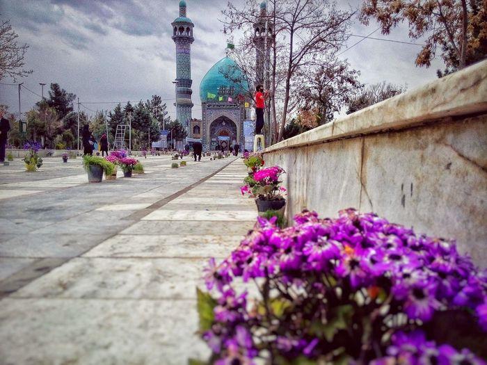 Flowers Flower Mosque