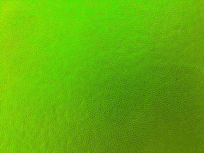 Abstract Backgrounds Blank Clean Close-up Felt Fiber Full Frame Green Background Green Color Indoors  Man Made Textile Material No People Pattern Softness Studio Shot Textile Textile Industry Textured  Textured Effect Vibrant Color Wool