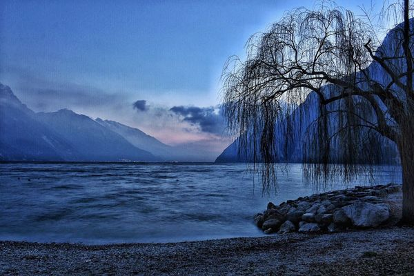 Beauty In Nature Tree Nature Cold Temperature Scenics Tranquil Scene Tranquility Landscape Winter Outdoors No People Sky Water Non-urban Scene Cloud - Sky Mountain Snow Lake Bare Tree Branch Sunset #sun #clouds #skylovers #sky #nature #beautifulinnature #naturalbeauty #photography #landscape Riva Del Garda Waterfront