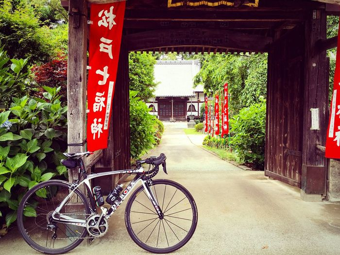 圓能寺 松戸 千葉 Chiba,Japan Bicycle Entrance Enjoying Life Relaxing DeRosa Derosaidol Roadbike Green Color 3XSPUnity Relaxation Hello World Lifestyles