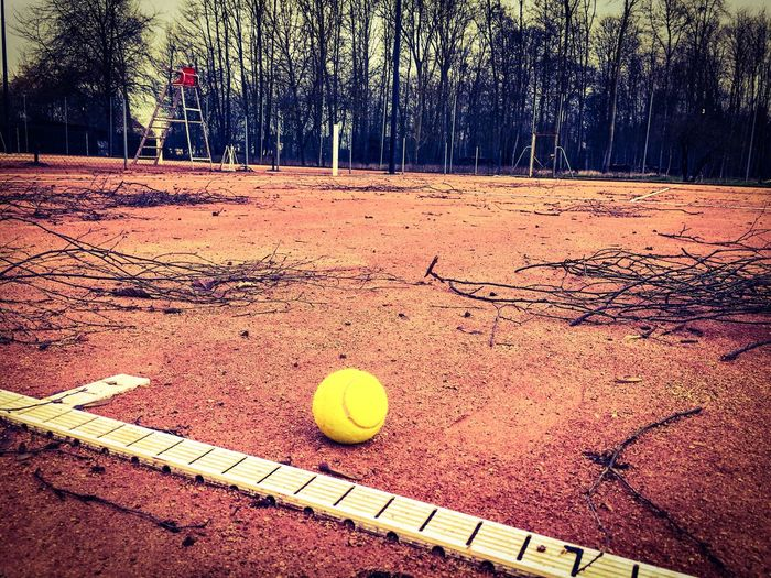 Tennis 🎾 Tenniscourt Tennisball Hiver Winter Outdoors Tranquility Contrastes Light Effects Showcase March