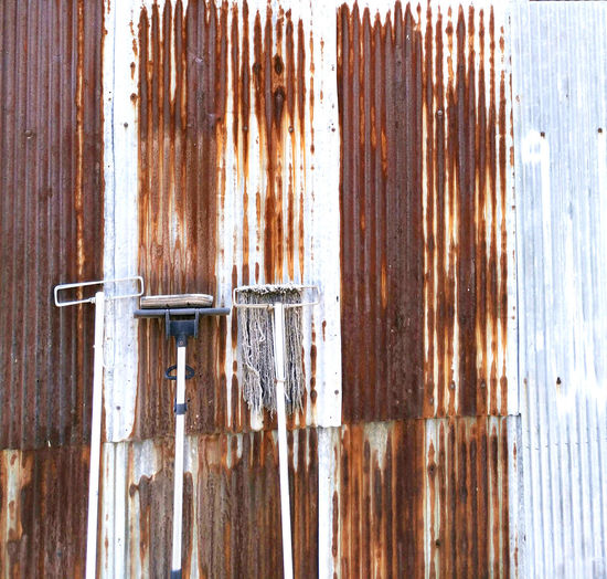 Mops on rusty corrugated iron