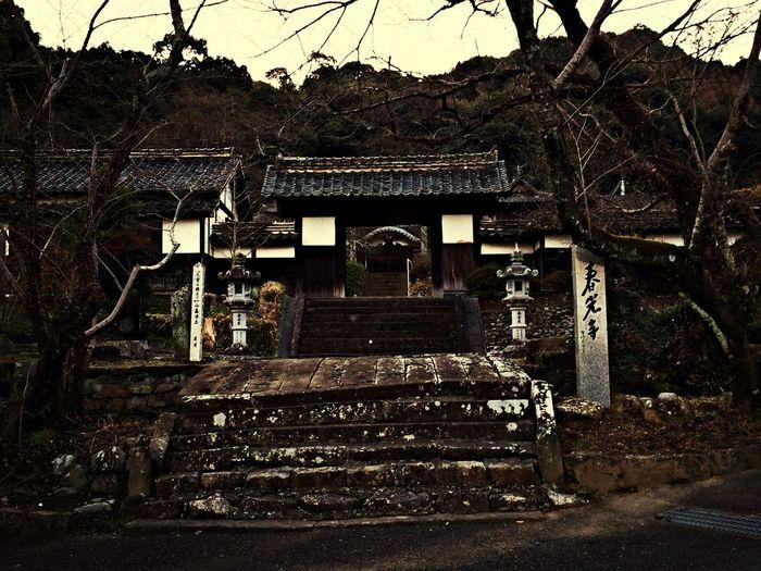 寺 Temple