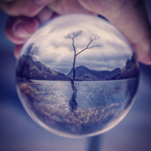 dreams Orb, Glass Sunrise Warm Clouds Cliudage Tree Alone. Nature Orb Glass Reverseimagr Searching Inspired Only Women One Woman Only One Person Sky People