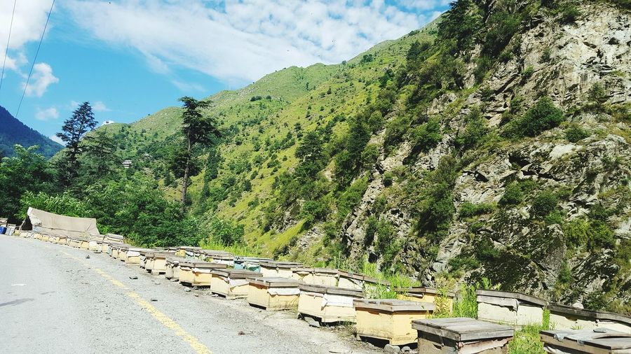 Bee honey farms near Kaghan Valley, Pakistan Human Vs Nature