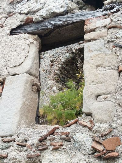 Outdoors No People The Places I've Been Today Behind The Window Old House Abandoned Stone House Bad Condition Old Ruin Lonely Place  Oldtown Old Buildings The View From My Cell From My Point Of View The Week Of Eyeem Sicily, Italy Savoca, Sicily Old Windows