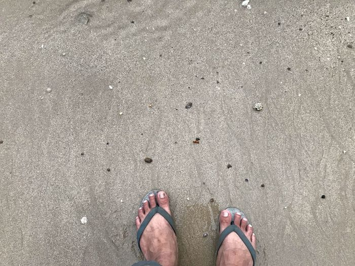 So free Low Section Human Leg Body Part Human Body Part One Person Personal Perspective Real People Beach Standing Sand High Angle View Shoe Lifestyles Human Foot Leisure Activity Outdoors