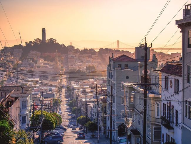 Architecture High Angle View City Travel San Francisco Cityscape Outdoors Bay Area California San Francisco Scenic View Built Structure Building Exterior Road Transportation Car Clear Sky Sunset Street The Way Forward Diminishing Perspective Vanishing Point Cable Vehicle Mountain City Life