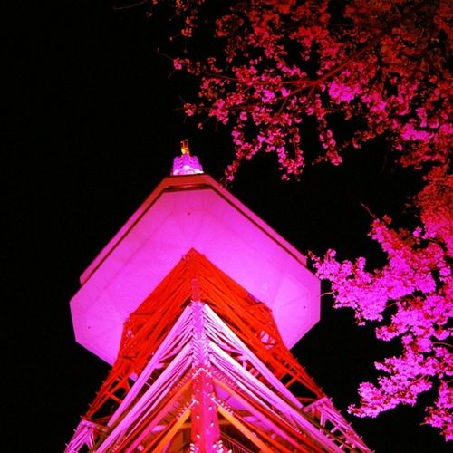 Utsunomiya Tower Pink Tower Sakura Japan Lightup Utsunomiya Tochigi Utsunomiyatower Hachimanyama