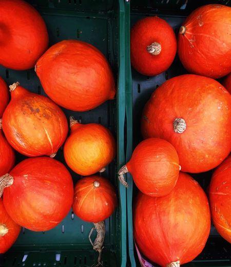 Close-up of pumpkins at market