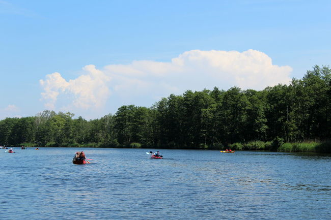 Peene Adventure Beauty In Nature Cloud - Sky Day Inflatable Raft Jet Boat Kayak Leisure Activity Men Nature Nautical Vessel Oar Outdoors Paddeln Paddleboarding People Rafting Real People Scenics Sky Tranquility Transportation Tree Two People Water Waterfront