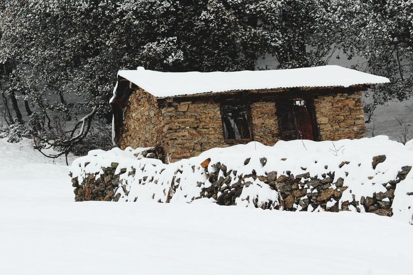 snow all there Shades Of Winter Snow Winter Cold Temperature Outdoors No People Built Structure Day Nature Snowing