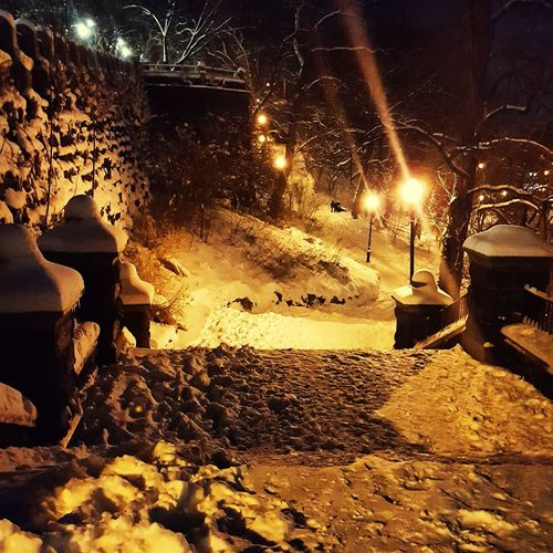 winter night at Morningside Park in NYC Snow Winter Night Park MorningSide Serene EyeEmNewHere Snow Covered Snowfall Frozen Season  Cold