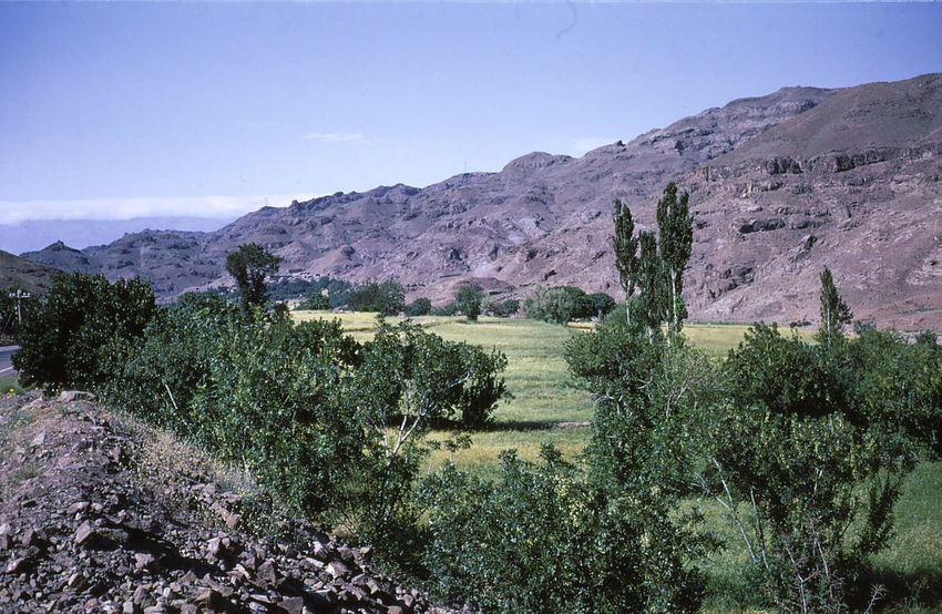 Valley between Tehran and Caspian Sea 1972 Caspian Sea Composition Sunlight Trees Arid Climate Arid Environment Beauty In Nature Blue Sky Clear Sky Green Colours Iran Land Landscape Mountain No People Non-urban Scene Outdoor Photography Scenics - Nature Tehran Tranquil Scene Tranquility Travel Destination Valley Valley View