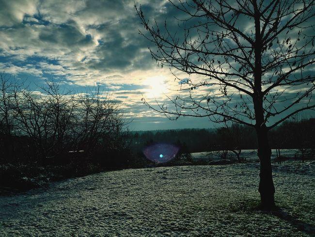 Sunshine winter day Snow Sunshine