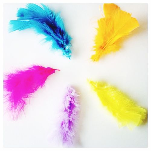 Happy Easter Easter Colorful Påsk Feathers