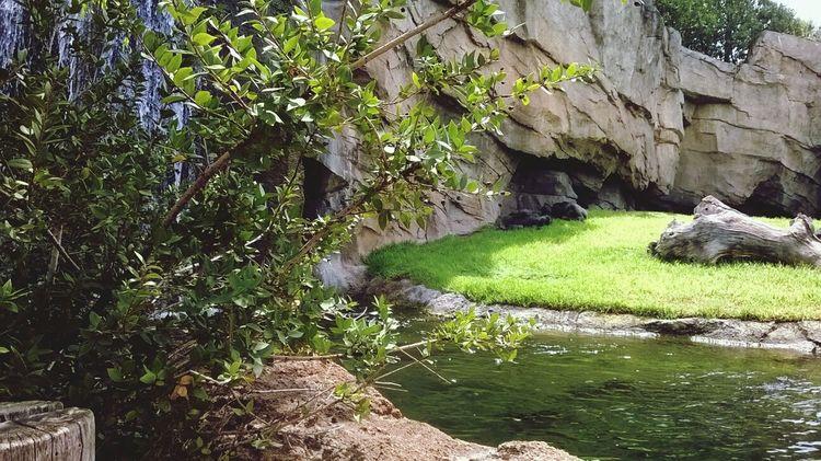 Biopark.Valencia