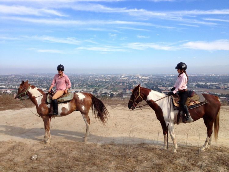 Horse Riding Horseback Riding Domestic Animals Sand Two People Working Animal Real People Mammal Side View Sky Outdoors Day One Animal Desert Men Full Length Livestock Nature Jockey 3XSPUnity EyeEmNewHere Millennial Pink