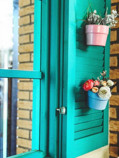 Close-up of potted plants on window door