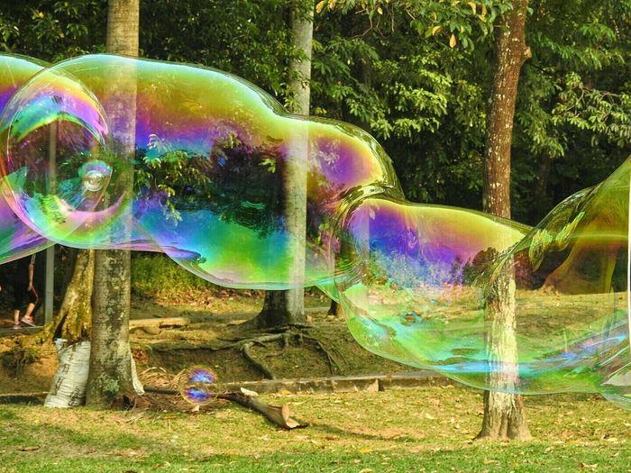 Bubbles Soap Bubbles Blowing Bubbles Bubbles... Bubbles...Bubbles.... Bubbleology Eyeem Bubbles EyeEm Best Shots Eye4photography  EyeEmBestPics Eyeemphotography