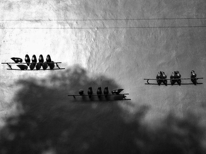 Urban Photography Blackandwhite Blackandwhite Photography