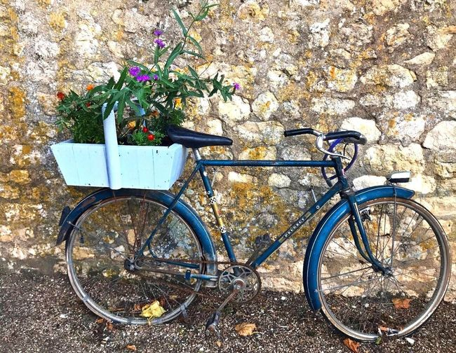 Village Photography Ciclismo EyeEm Flower Couleurs D'automne Bleu Sky With White Clouds EyeEm Best Shots - Nature Landscape_Collection Couleurs Naturelles ForTheLoveOfPhotography EyeEm Best Shots - Landscape Imperfection Is Beauty EyeEm Gallery Velo Bicycle Land Vehicle Mode Of Transportation Transportation Stationary No People Day Plant Outdoors Sunlight Parking Architecture Wall - Building Feature Basket Growth Flowering Plant Street
