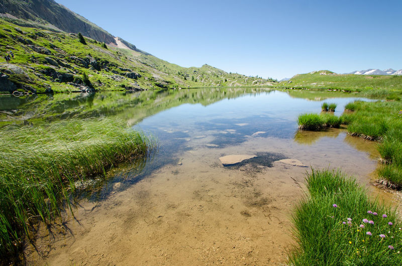 Earth Pure Alps Beauty In Nature Clear Sky Day Ecology Grass Green Color Lake Landscape Mountain Nature No People Outdoors Purity River Scenics Sky Summer Tranquil Scene Tranquility Water