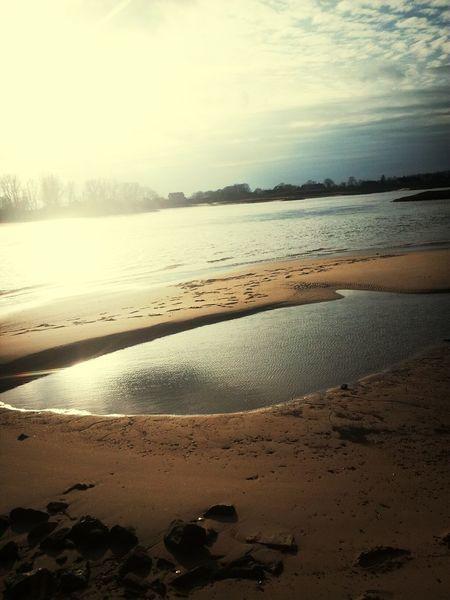 Elbe Chillax Beach