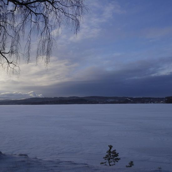 Nature Skyporn Wintertime In Sweden Winter
