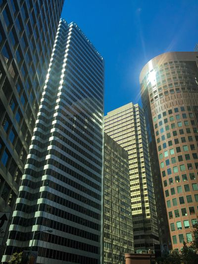 Architecture Building Exterior Building City Built Structure Low Angle View Office Building Exterior Modern Sky Skyscraper Tall - High Office Nature No People Sunlight Blue Day Travel Destinations City Life Window Outdoors Cityscape Bright Financial District