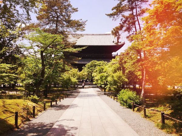 Built Structure Temple Oldtemple Architecture Architecturelovers Building Exterior Beauty In Nature Nature Growth Beauty In Nature Japanese Style Nanzen-ji 세계 Photooftheday Walking Around Snap Snapshot Art Is Everywhere Photogenic  IPhoneography Kyoto 京都 City Life Tranquility Photo Of The Day