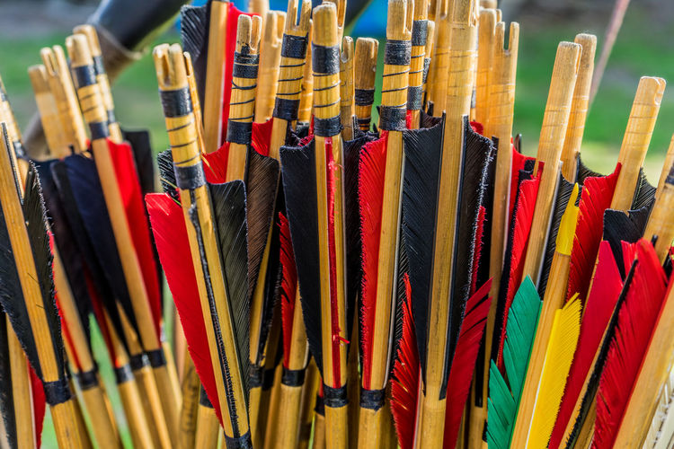 Close-up of multi colored traditional archery arrows