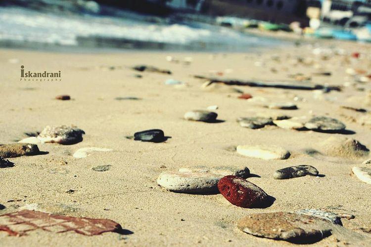 Alexandria - Bahary my lovely