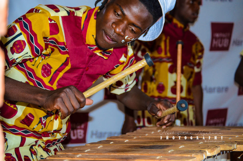 Real People Men Musical Instrument One Person Occupation Holding Music Indoors  Playing Concentration Young Men
