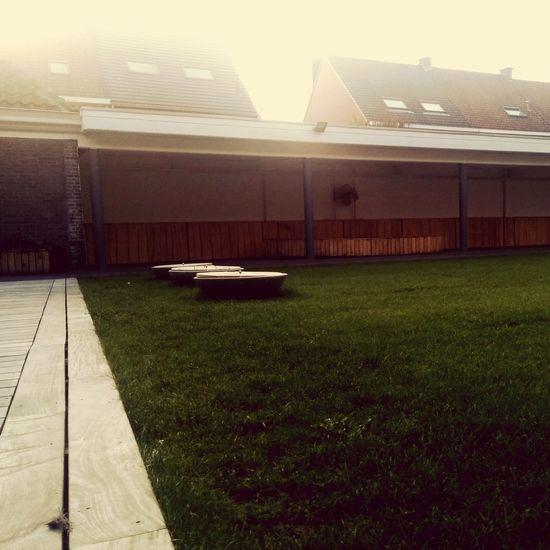 Green court yard
