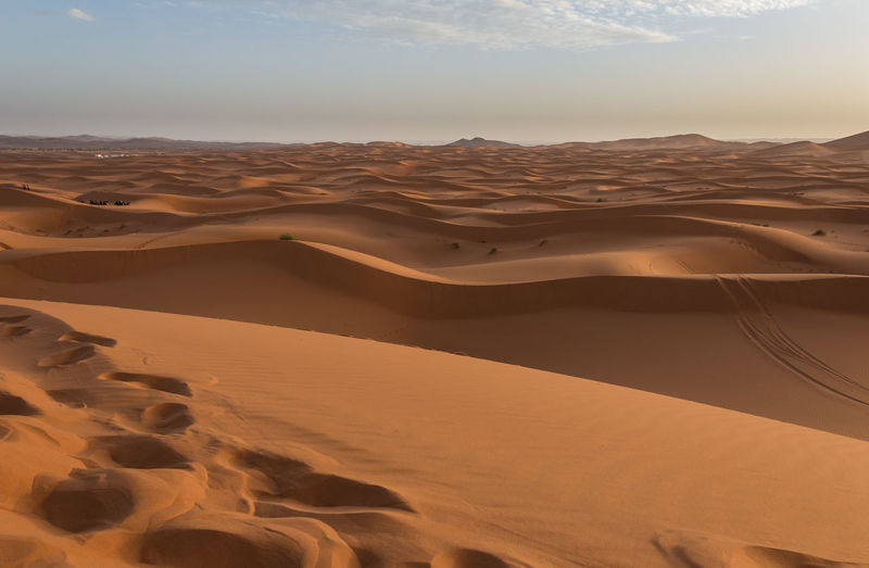 Sand Desert Scenics - Nature Landscape Beauty In Nature Tranquility Environment Sky Non-urban Scene No People Nature Remote Sahara Sahara Desert Morocco Morocco 🇲🇦 Sundown Sunset Desert Landscape Sand Dune Climate Outdoors Atmospheric Natural Pattern