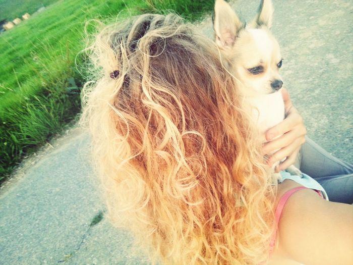 Live, Love, Laugh Best Friends My Dog Chihuahua wenn du weist wo du stehst, kannst du sein wo du willst ????