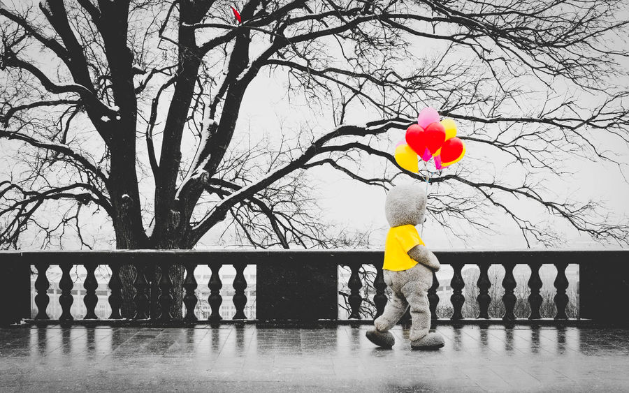 Alone Bear Loneliness Lonely Moscow Russia Winter Balloons Bare Tree Branch Childhood Cold Full Length One Person Outdoors Snow Taddy Bear Toy Tree