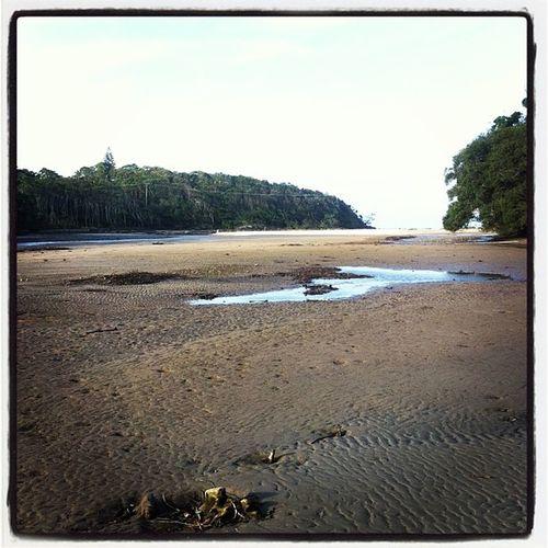 Wheresallthewatergone Lagoon Woolgoolga Woopi coastal