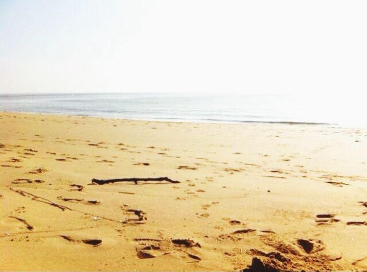 Summer - Summer Paradise Playa Beach ❤️❤️