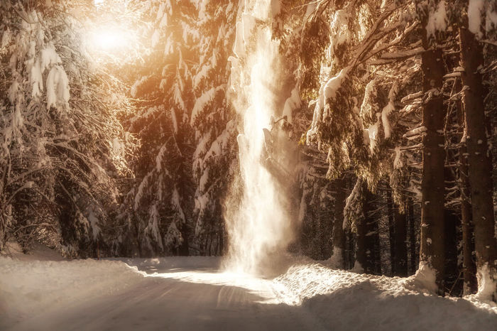 Shades Of Winter Slovenia Slovenia Scapes Beauty In Nature Cave Forest Hot Spring Luminosity Motion Nature No People Outdoors Power In Nature Scenics Sunlight Travel Destinations Tree Water Waterfall