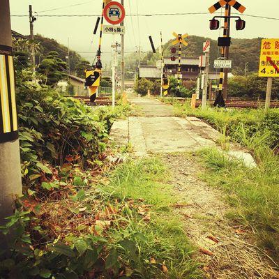 Railway Crossing Landscape