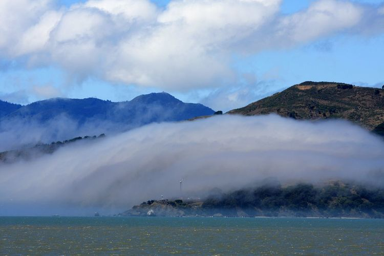 Summer fog~