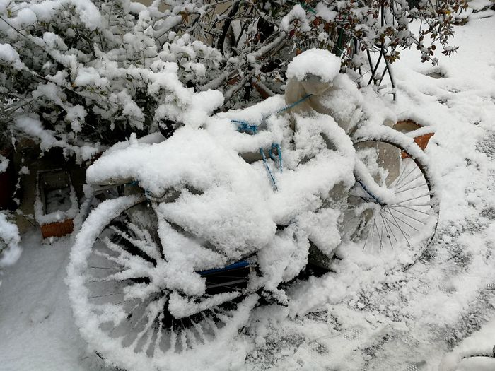 🚲❄️ Bicicleta Snow Fullofsnow Water Ice Snowinaples Day Amazing Winter Snow Cold Temperature Nature High Angle View Outdoors Day No People Beauty In Nature Close-up