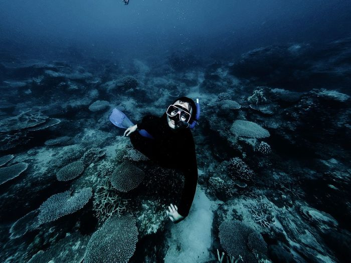 Karimun jawa is one of many beautiful spot for diving in indonesia