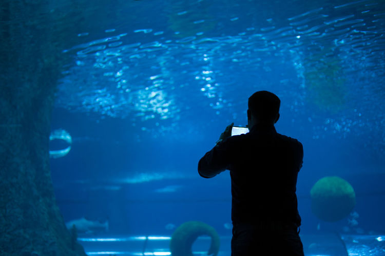 Silhouette man photographing fish tank in aquarium