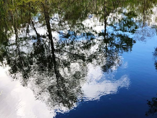 Water Reflection Nature Beauty In Nature No People Waterfront Outdoors Scenics Day Blue Tranquility Tree Sky