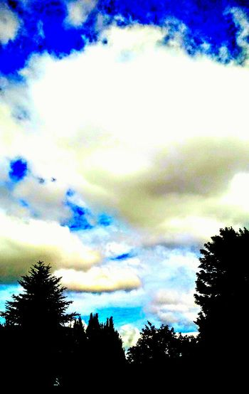 Beauty In Nature Oregonlife Cloud - Sky Contrasting Colors Heavenly Relaxing Taking Photos Check This Out Enjoying Life Makes Me Smile Bright Colors Beautiful ♥ Talking Photos Happyness Inspire Overedited Who Cares Hahaha Looks Cool